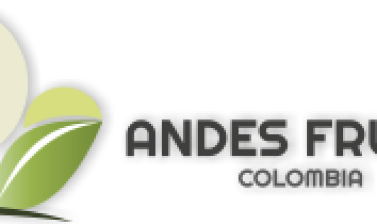 Andes-Export-Company