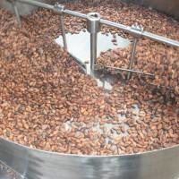 Enfriador-de-Cacao